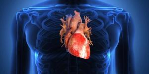 plb_140203_p jantung